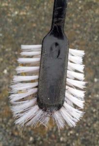 Använd diskborste för att borsta rent skorna från Koccidios
